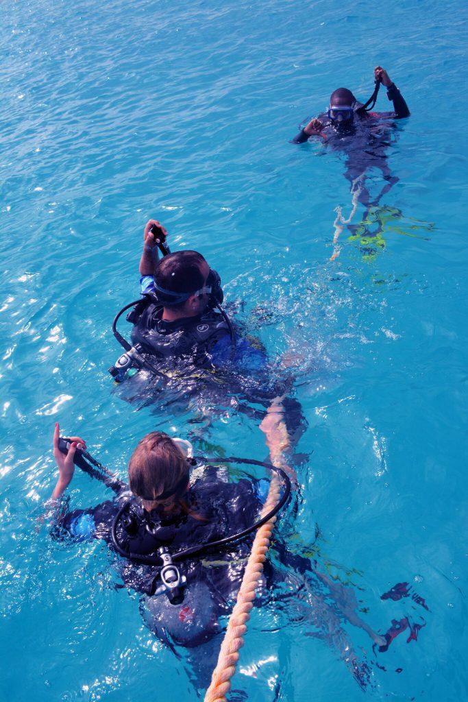 Diver descent