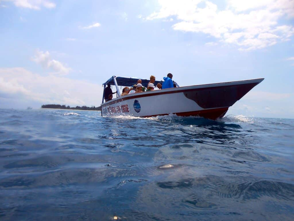 Zanzibar Manta Speedboat