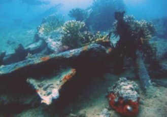 wreck diving stone town